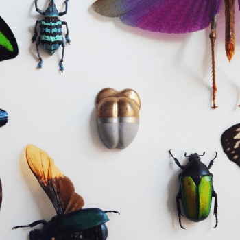 Jewel Beetle broche