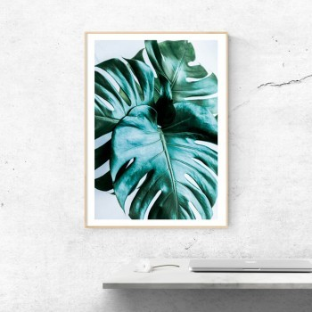 ✖ Poster Jungle fever Monstera