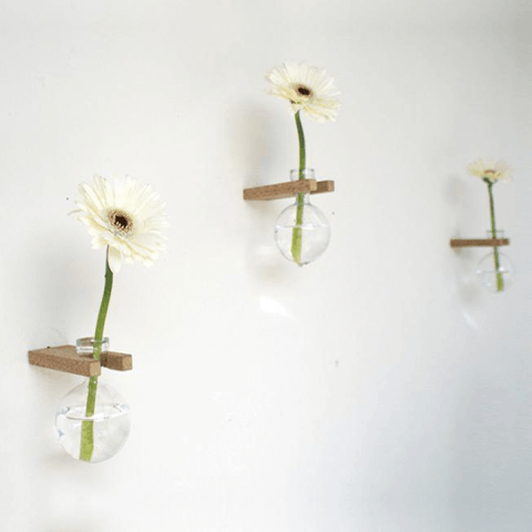 Wooden Glass wall Vase
