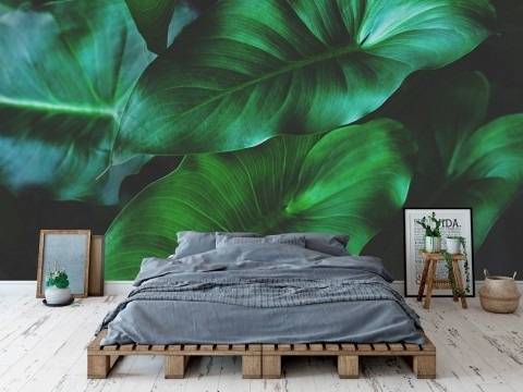 Daring Walls Behang Tropical leaves - 3